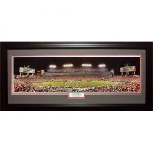Tampa Bay Buccaneers (32 Yard Line) Deluxe Framed Panoramic Photo
