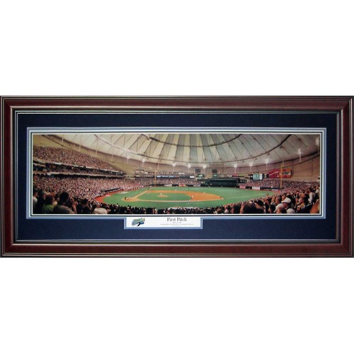 Tampa Bay Rays (First Pitch - Tropicana Field) Deluxe Framed Panoramic Photo