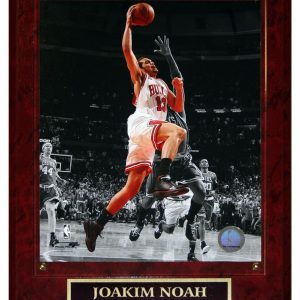 Joakim Noah Chicago Bulls (Spotlight Dunk over Pierce) Licensed 8x10 Photo Plaque