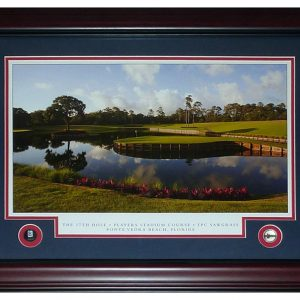 The Players Championship (TPC Sawgrass) Deluxe Framed Poster with Ball Markers and Nameplate