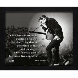 "Elvis Presley Framed 11x14 ""Pro Quote"" #1"