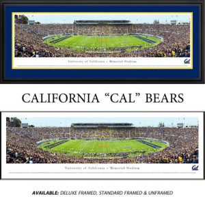 University of California Berkley Framed Stadium Panoramic