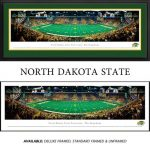 North Dakota State University Framed Stadium Panoramic