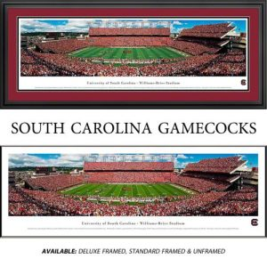 University of South Carolina Gamecocks (50 Yard Line) Framed Stadium Panoramic
