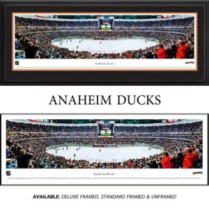 Anaheim Ducks Framed Stadium Panoramic