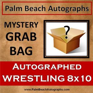 MYSTERY GRAB BAG - Wrestling WWF/WCW/WWE Autographed 8x10 Photo