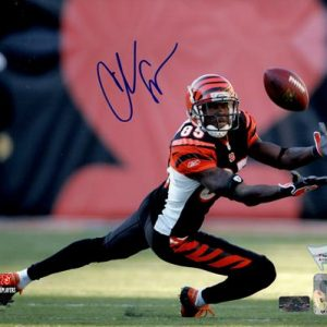 Chad Johnson Autographed Cincinnati Bengals (Horiz) 8x10 Photo - Fanatics